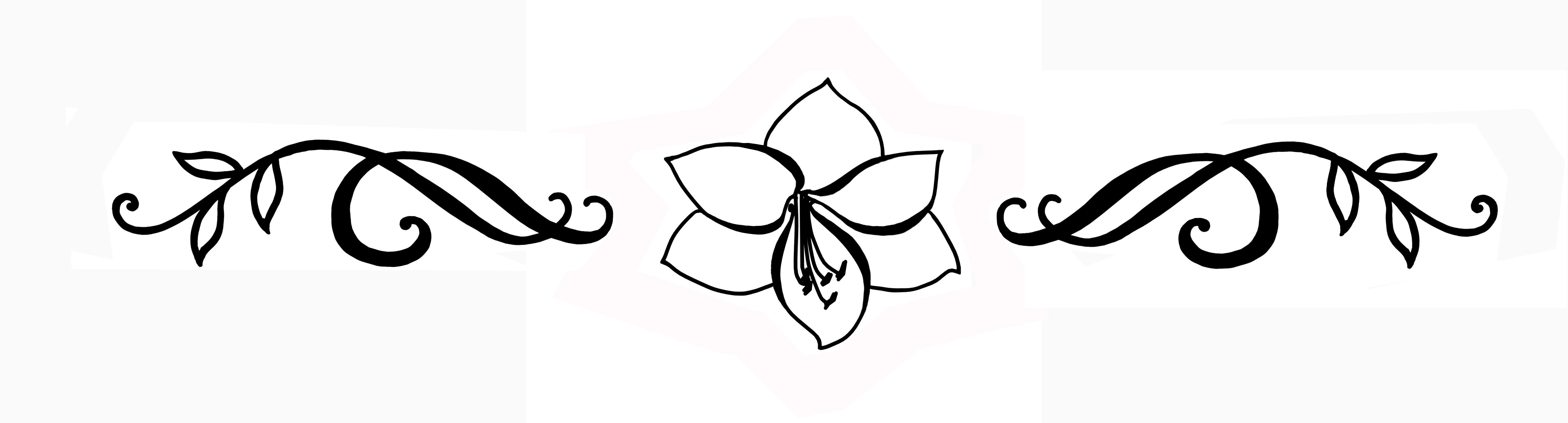 Lilleõis separaator (2).jpg